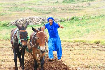 randonnée vallée ait bouguemez Maroc