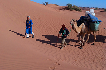 randonnée dunes et vallée du draa maroc