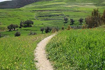 randonnée vallée amizmiz